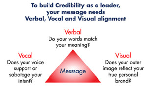 Verbal vocal visual message triangle