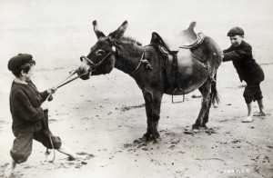 Stubborn as a mule. Boys on a beach try to coax a recalcitrant animal into action. Photograph, early 1900's. --- Image by © Bettmann/CORBIS